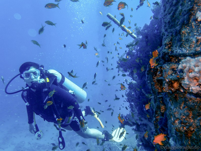 diving immersioni eilat